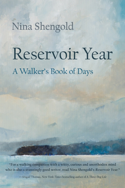 Reservoir Year cover image